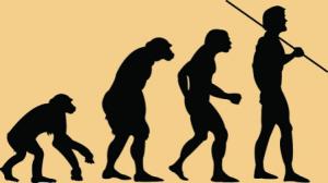 Paleo Diet - evolution